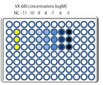 Figure 2. Plate layout for the VX-680 dose-response experiment