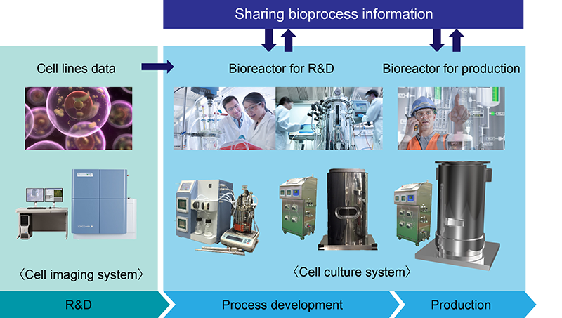 Development toward material production plants with various industrial organisms