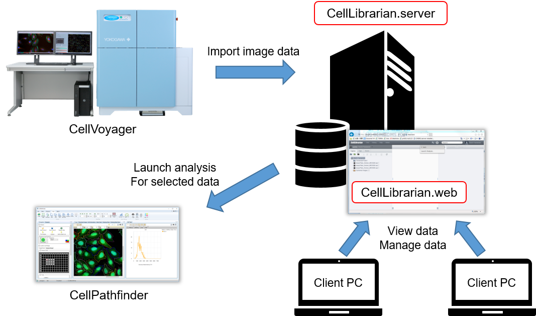 Configuration of the CellLibrarian system