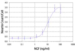 Dose-response curve of the neurite number per cell