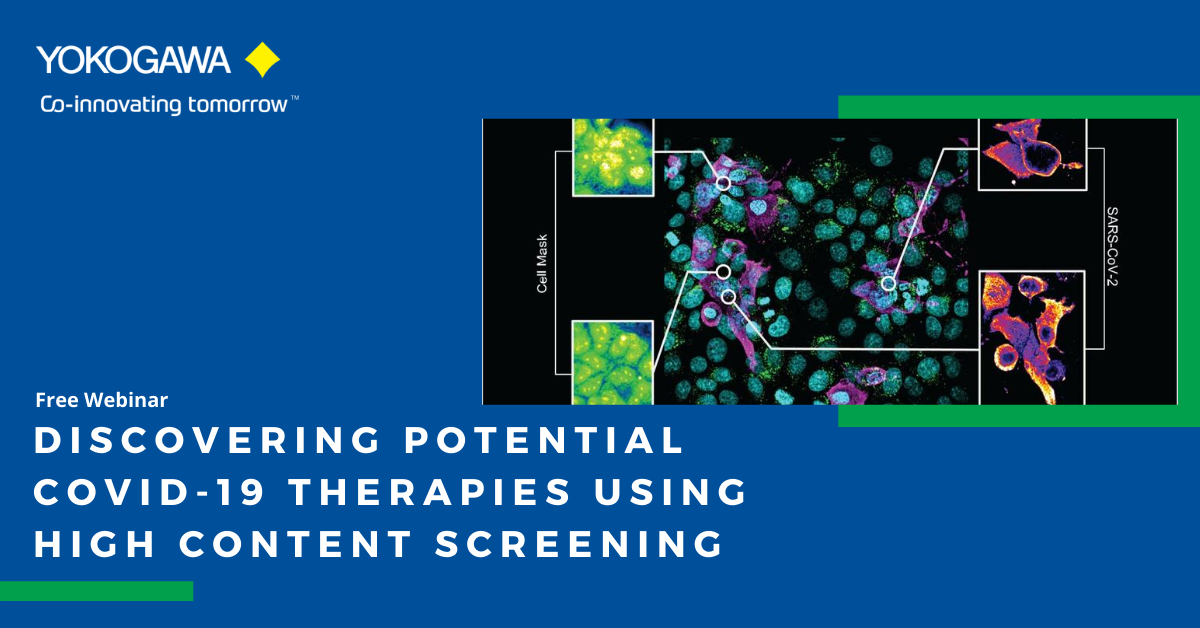Discovering Potential COVID-19 Therapies using High Content Screening