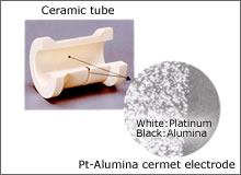 The integral-type Pt-Alumina electrode