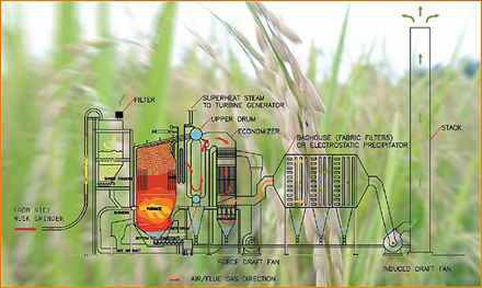 biomass cogeneration power plant