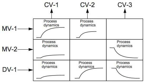 Figure 3 Conceptual diagram of a dynamic model