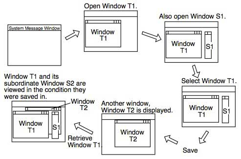 Figure 6 Operation with a Dynamic Window Set