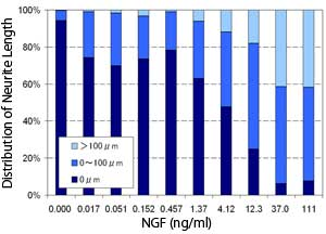 Distribution analysis of neurite length of each individual cell at each NGF dosage