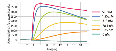 Averaged cellular fluorescent intensity as shown at each Ionomycin dosage.