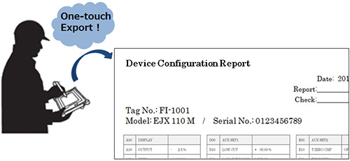 Device information report for transmitters and flowmeters