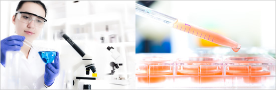 Lab Information Management System image