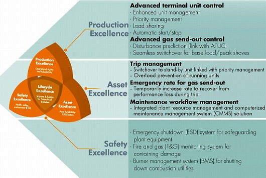 Production and Asset Excellence Functions