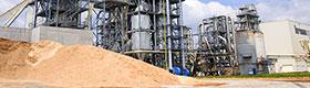 Energía de Biomasa vista en miniatura