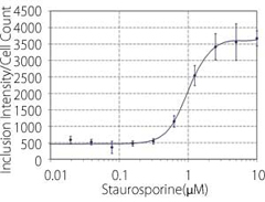 """Dose response curve (X: Staurosporine dosage, Y:Inclusion Lntensity/Cell Count)"