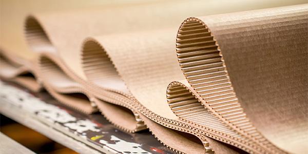 Pulp & Paper thumbnail