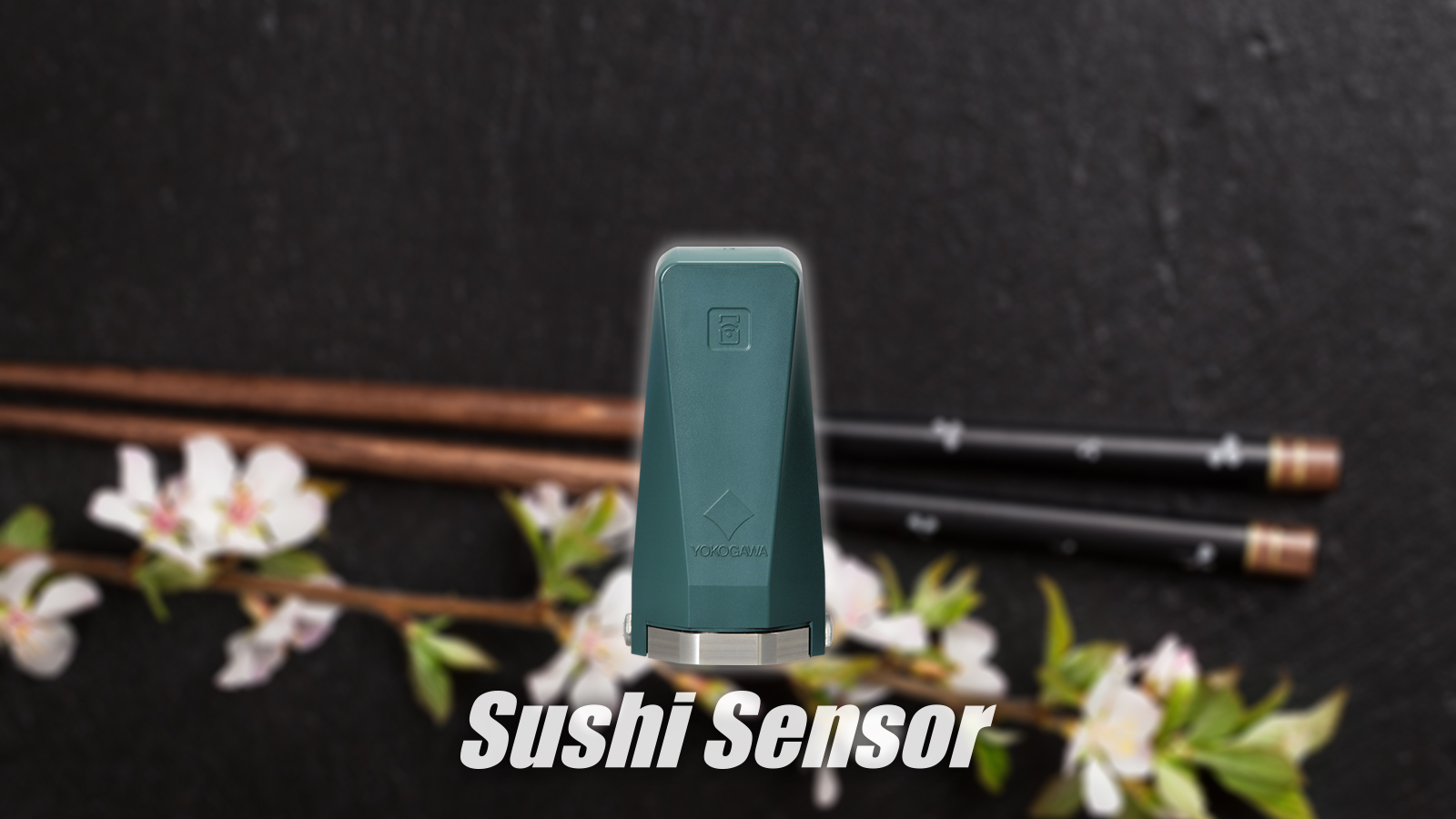 Sushi Sensor XS770A wallpaper for PC
