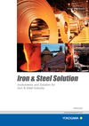 Instruments and Solution for Iron & Steel Industry PDF thumbnail