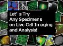 생명과학 thumbnail