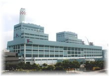 Tuas Power Station: Plant view